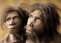 Сколько лет живут люди на Земле