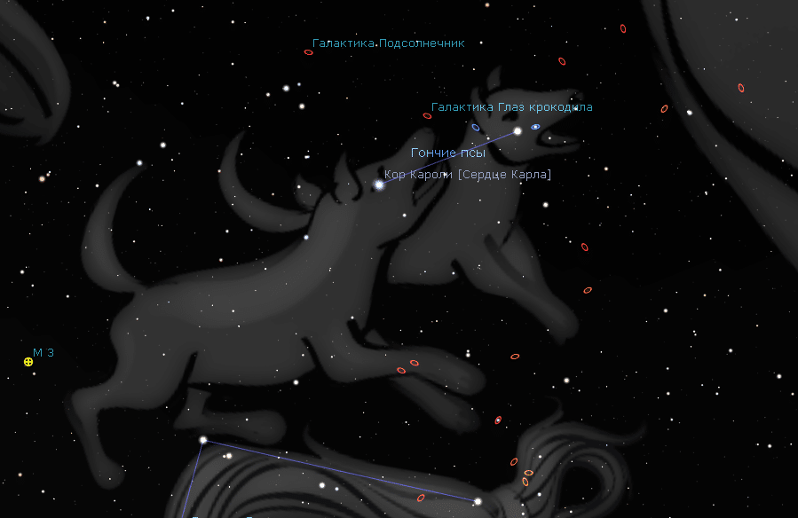 Созвездие Гончие Псы