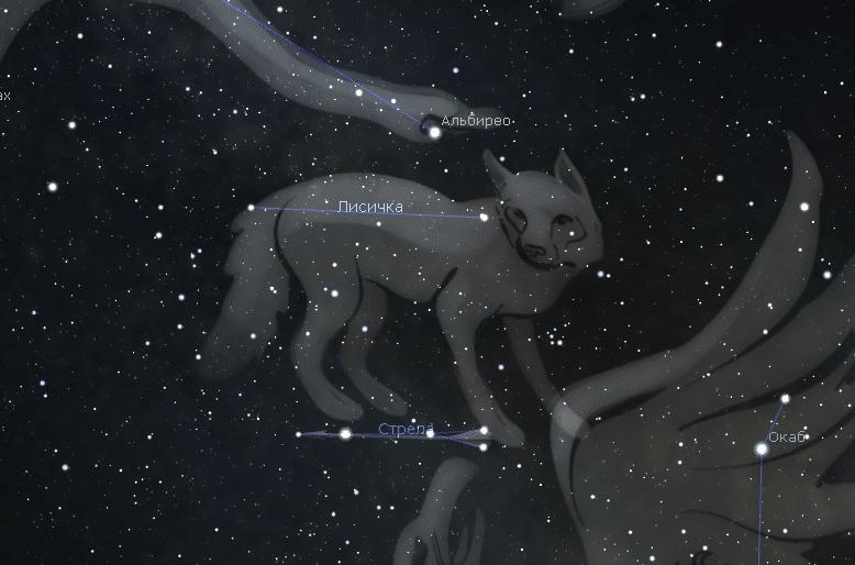 Созвездие Лисичка