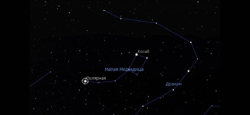 В каком созвездии Полярная звезда