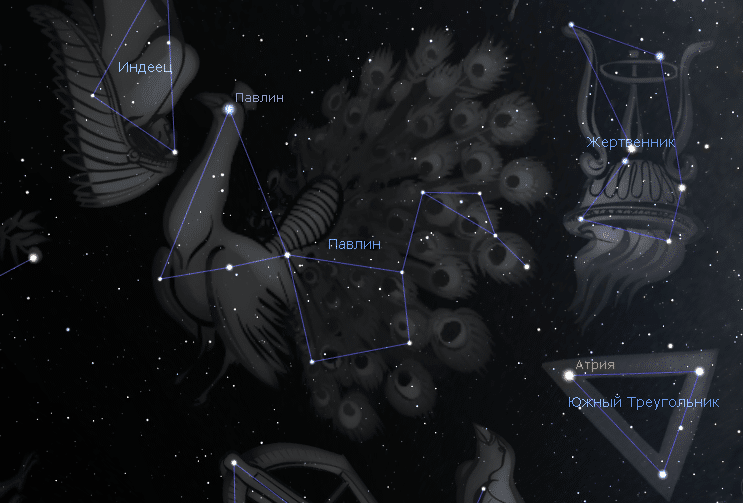 Созвездия Павлин