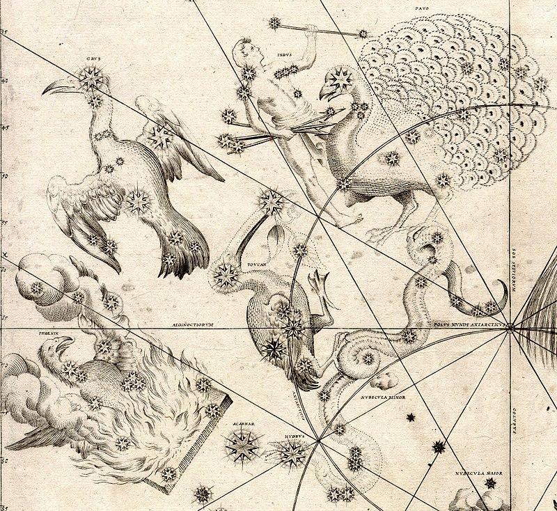 Павлин (справа вверху) с другими «южными птицами», это его первое появление в звёздном атласе, «Уранометрия» И. Байера, 1603 год, ярчайшая α Павлина — в голове птицы.