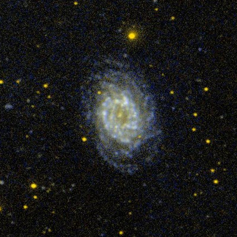 NGC 3887
