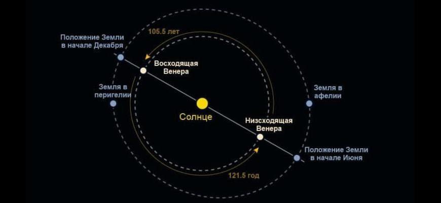 Орбита Венеры