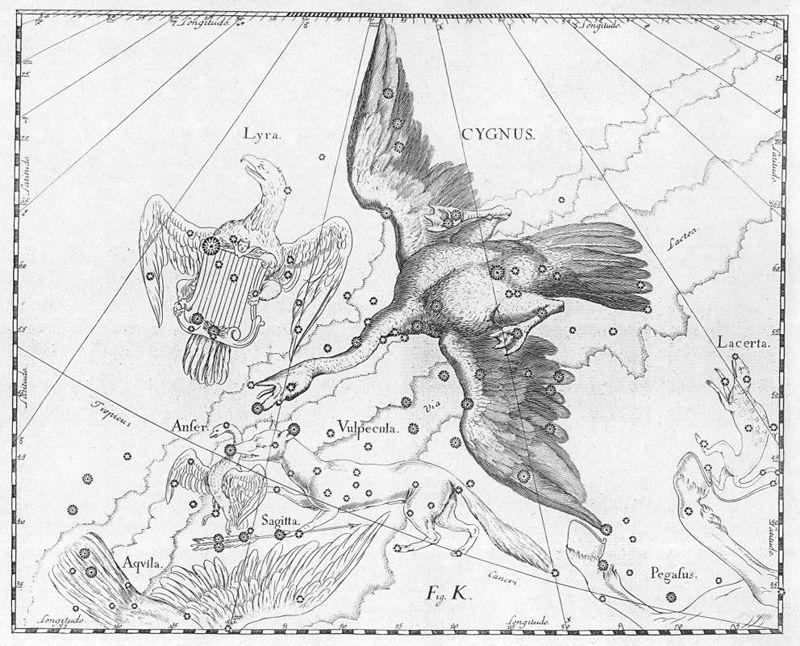 «Лисичка с Гусем» — гравюра из атласа Гевелия «Уранография»