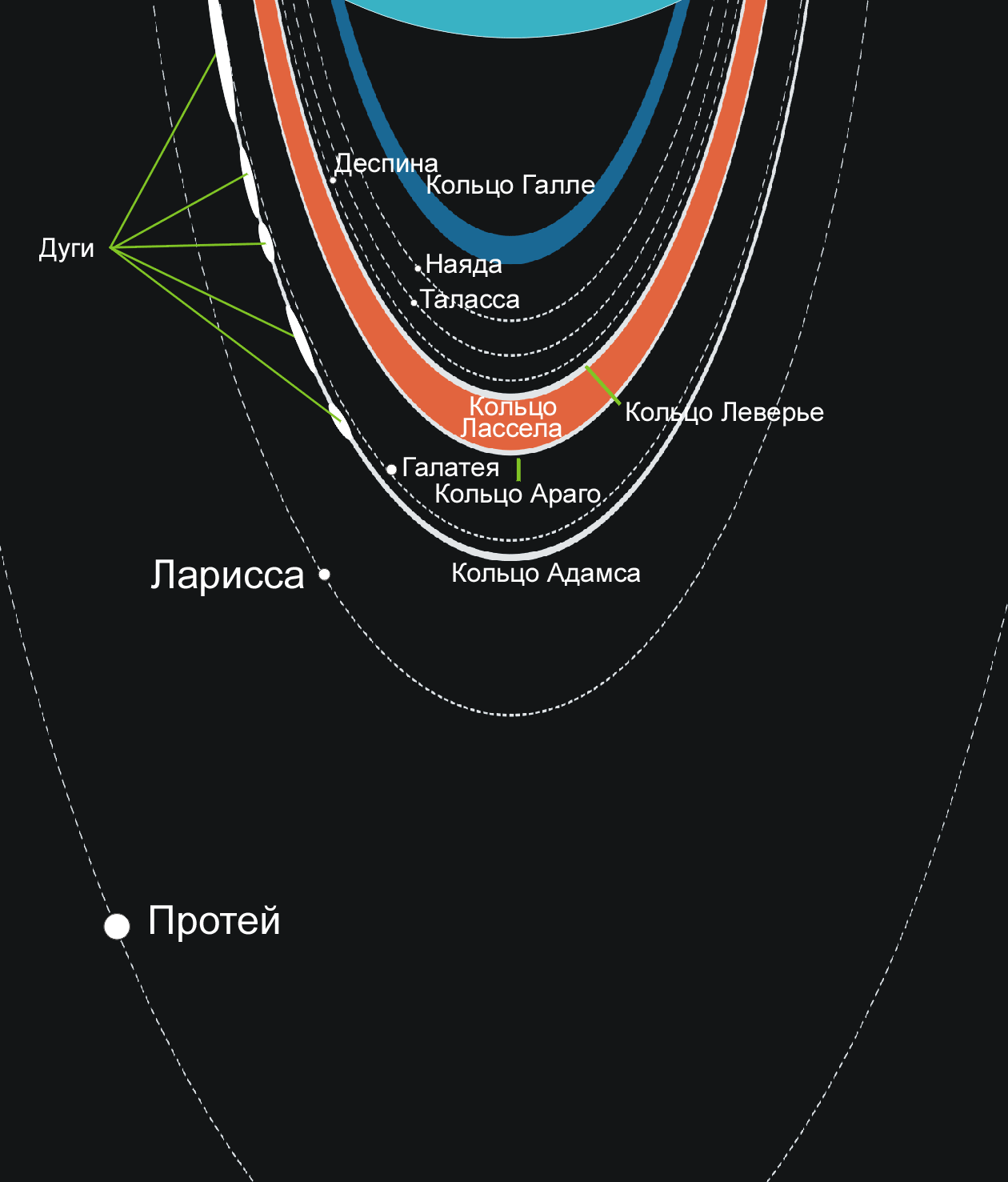 Схема спутников и колец Нептуна