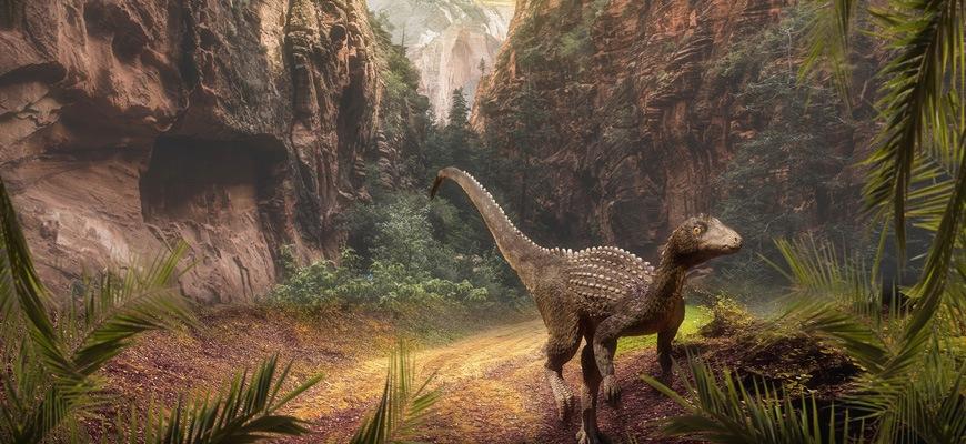 Куда упал метеорит, убивший динозавров
