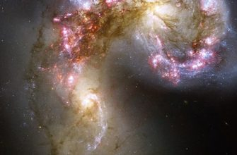 Тест, Галактики