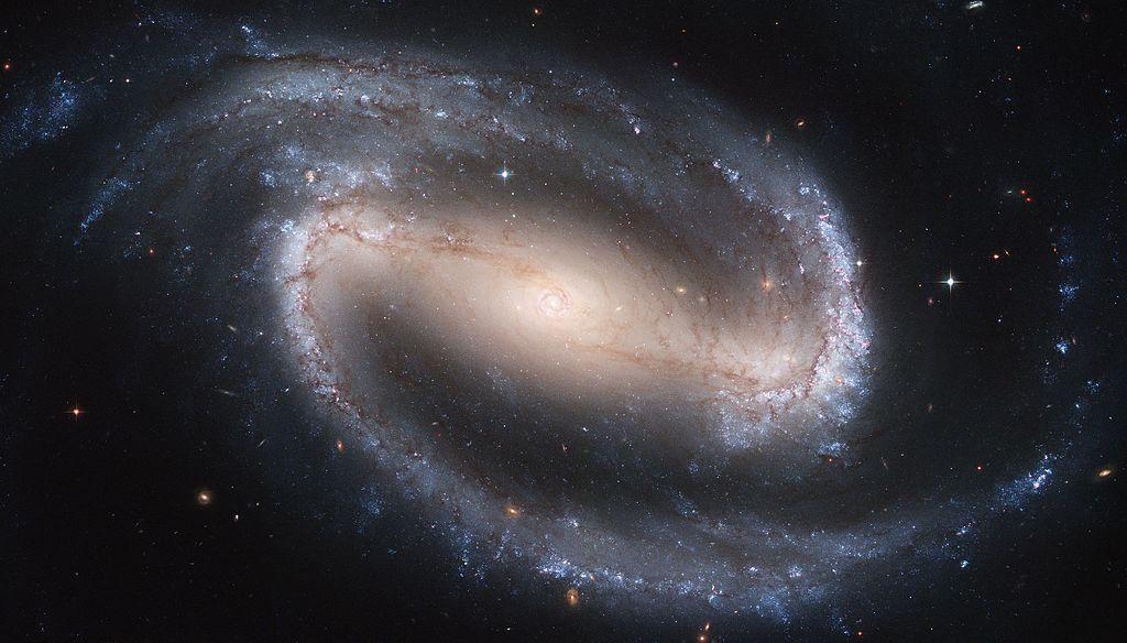 Бар (перемычка) проходит от внутренних концов спиральных ветвей (голубые) к центру галактики. NGC 1300.